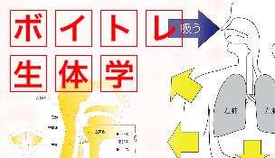 ボイスとレーニング生体学はこちら ボイストレーニング東京のボイトレ7